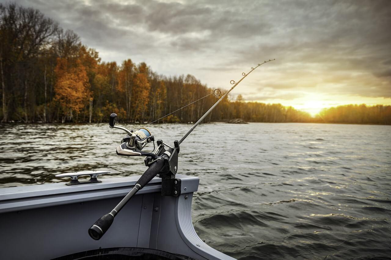 Fiske i Norrköping och 3 bra fiskeplatser