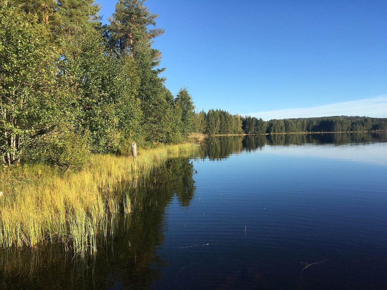 Fiske i Värmland och 5 bra fiskeplatser