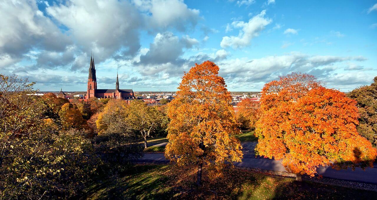 Fiske i Uppsala och 5 bra fiskeplatser